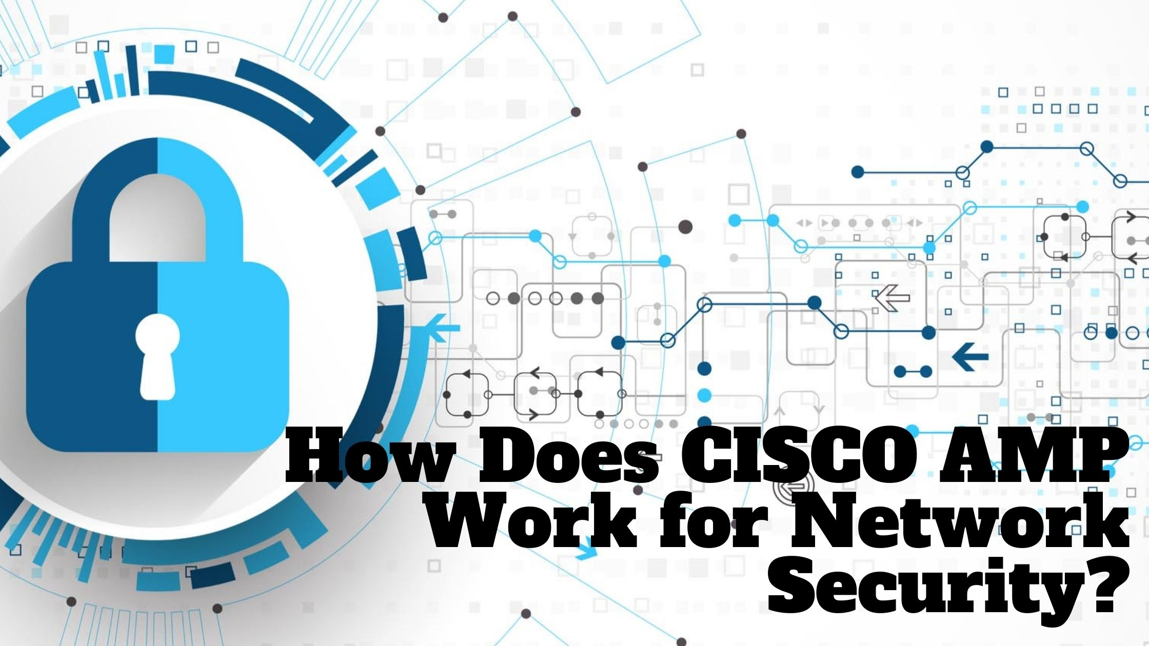 How Does CISCO AMP Work for Network Security?